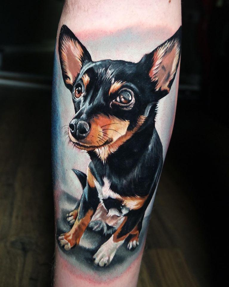 Realistic miniature pinscher tattoo