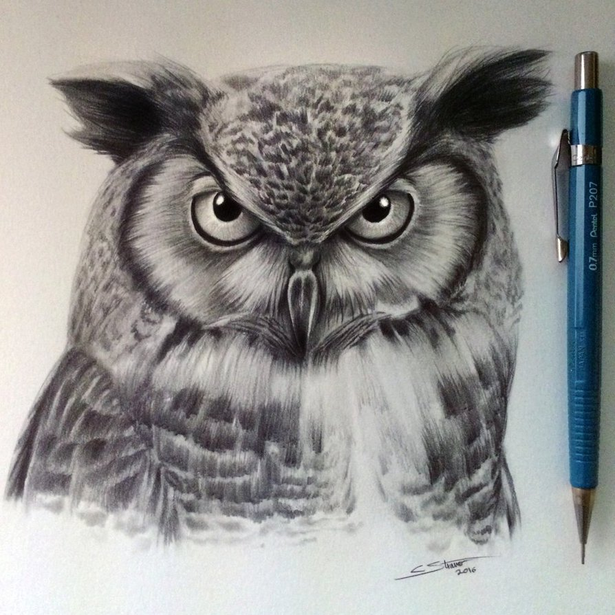 Realistic Pencil drawn Owl Tattoo Design By Lethal Chris