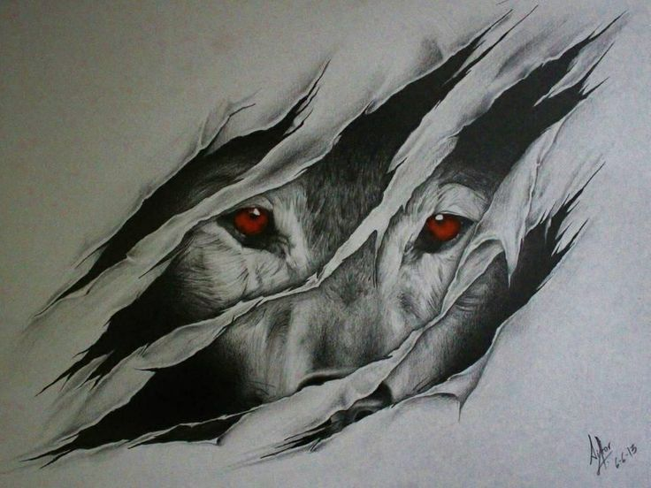 Eyed Wolf Looking From Scratch Holes Tattoo Design Tattooimagesbiz