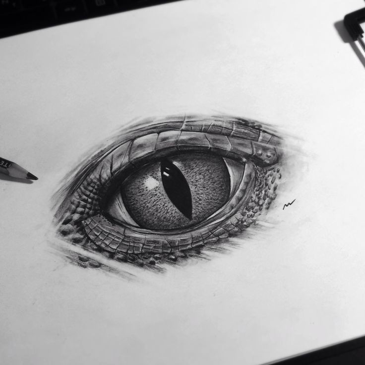 Realistiv black-and-white reptile eye tattoo design