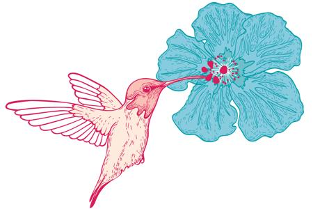 Red-line hummingbird and blue hibiscus flower bud tattoo design
