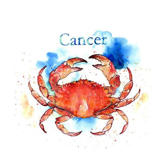 Red crab on blue watercolor background with cencer quote tattoo design