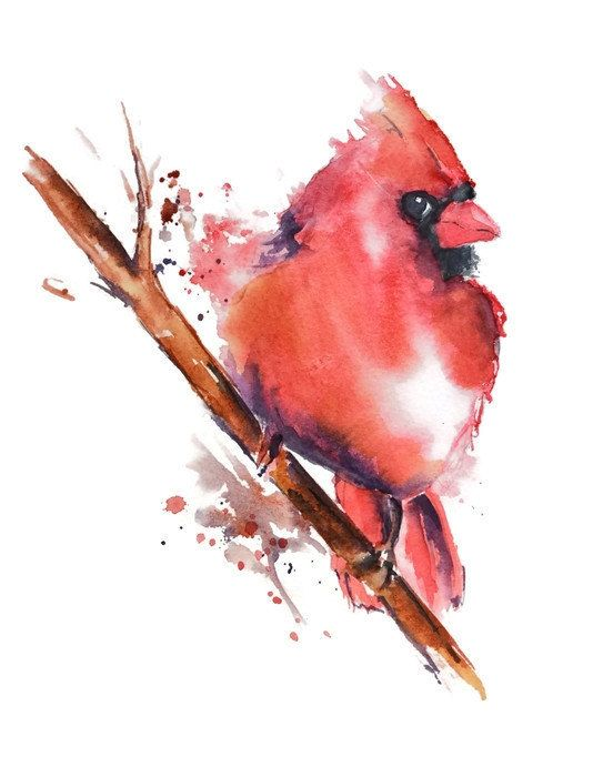 Red watercolor bird sitting on brown tree branch tattoo design