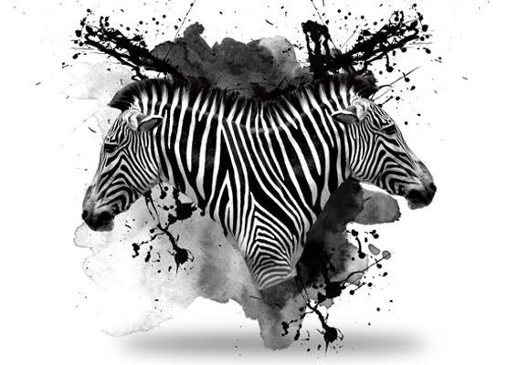 Reflected realistic zebra head on black watercolor background tattoo design