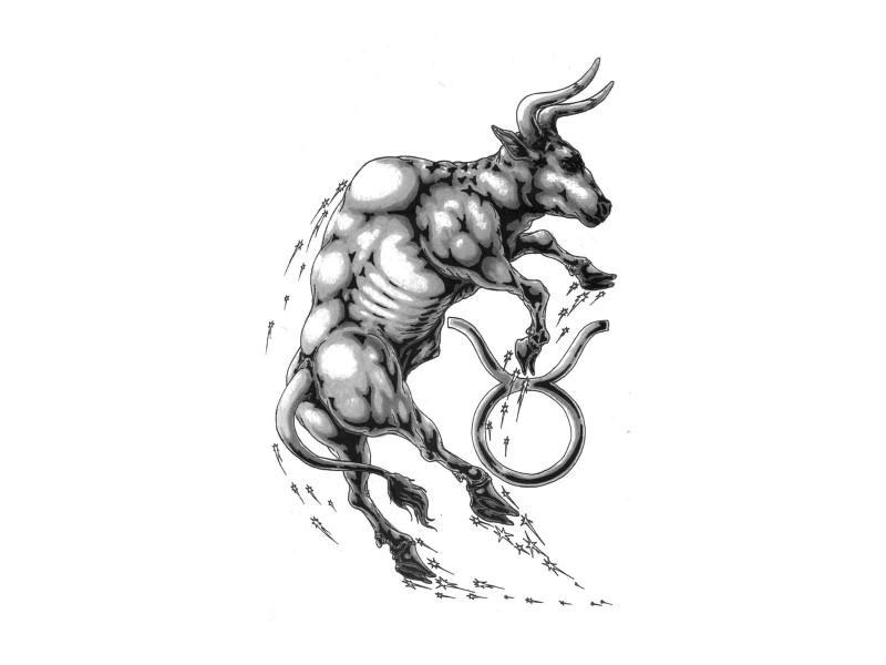 Restless grey-ink bull and zodiac symbol tattoo design