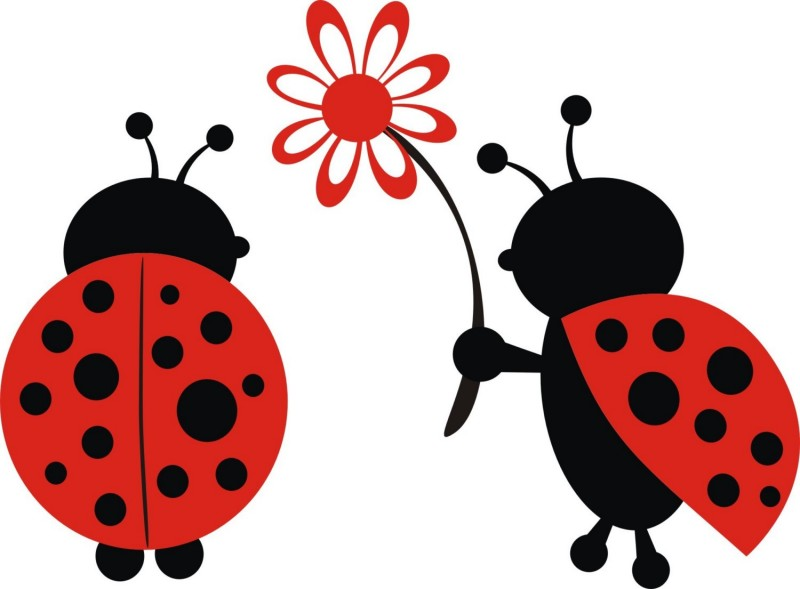 Romantic colored ladybug couple with flower tattoo design