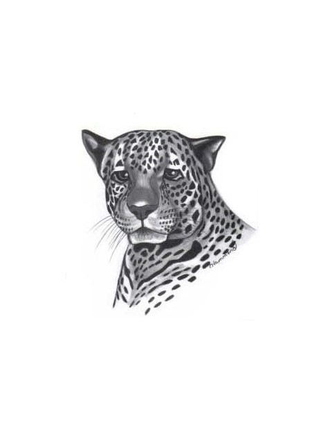 Sad black-and-grey jaguar portrait tattoo design