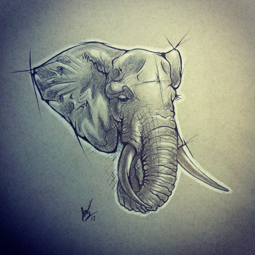 Sad Grey Drawn Elephant Head Tattoo Design Tattooimagesbiz