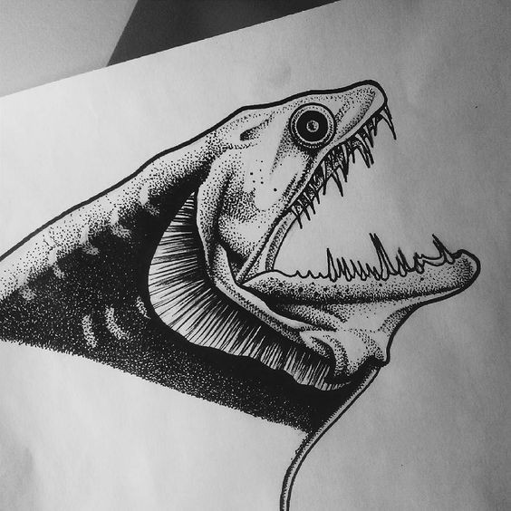 Sary dotwork fish head with sharp teeth tattoo design