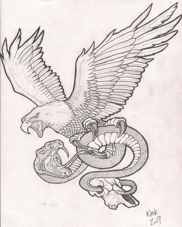 screaming grey eagle keeping a long snake tattoo design. Black Bedroom Furniture Sets. Home Design Ideas