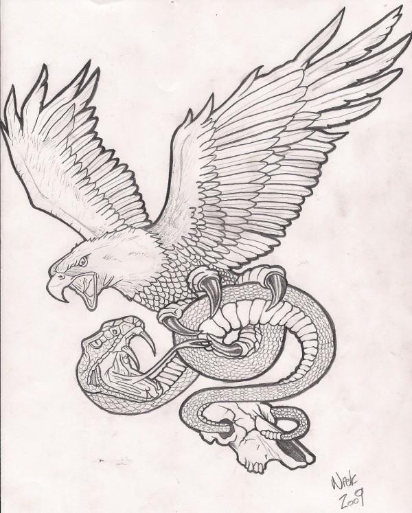 screaming grey eagle keeping a long snake tattoo design. Black Bedroom Furniture Sets. Home Design Ideas
