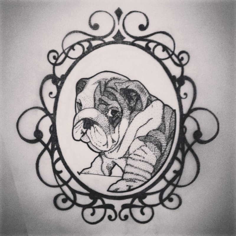 shy black and white bulldog in curled frame tattoo design. Black Bedroom Furniture Sets. Home Design Ideas