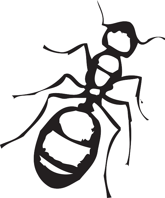 Simple black-and-white ant tattoo design