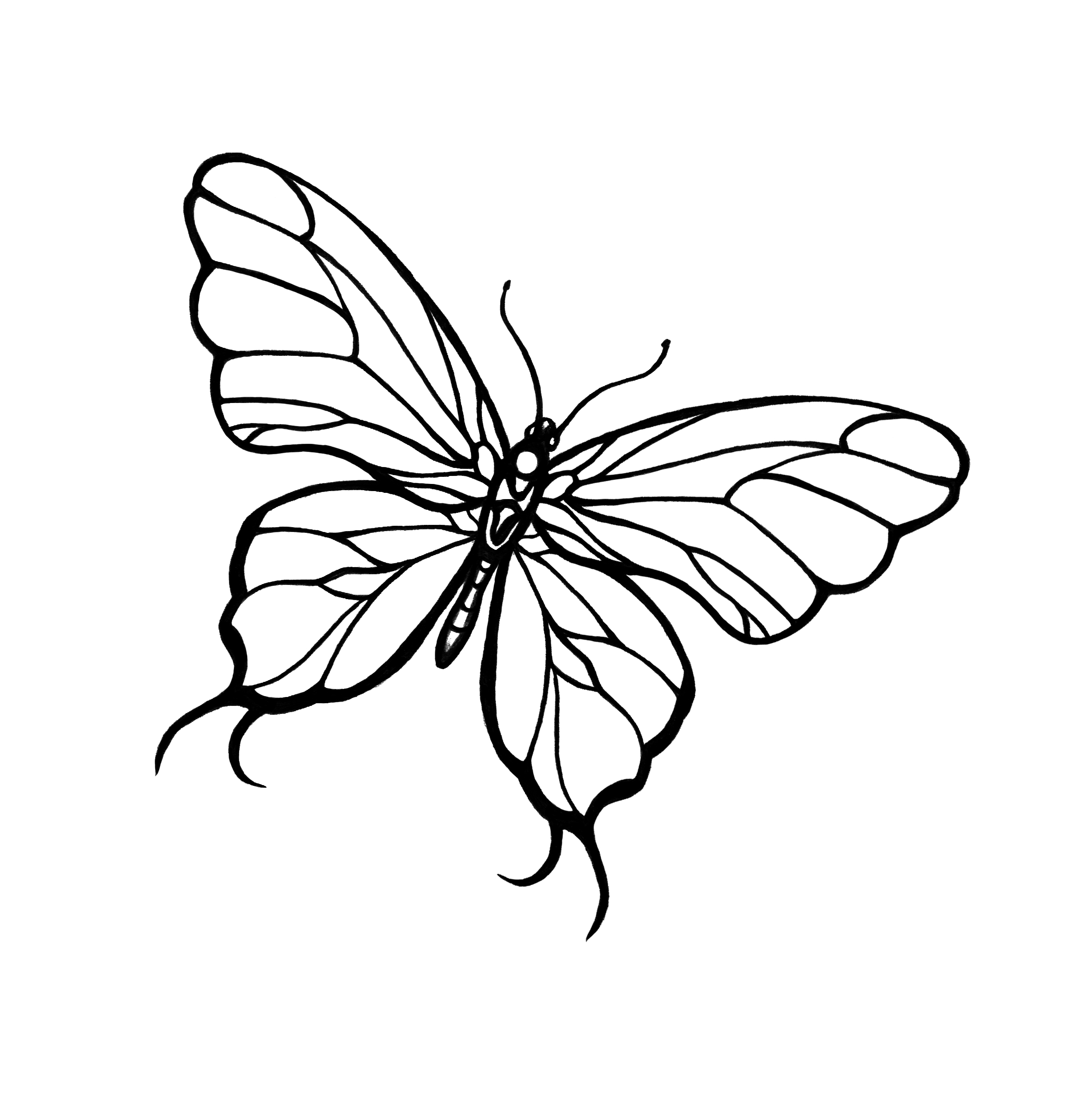 Simple black-line butterfly tattoo design - Tattooimages.biz
