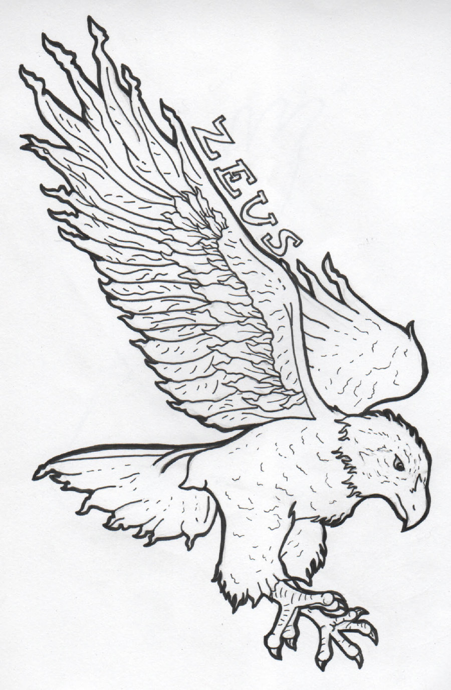 Eagle Tattoo Line Drawing : Simple black line flying eagle and lettering by drawing