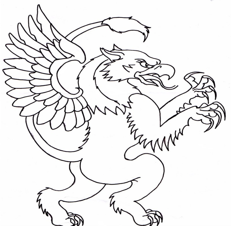 Griffin Outline