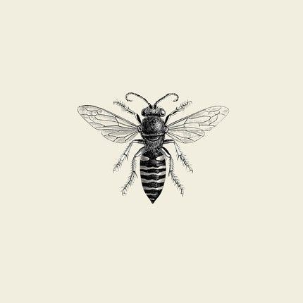 Simple grey-ink bee tattoo design