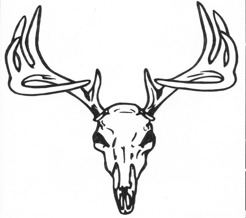 Simple Antler Tattoo: Simple Outline Deer Skull Tattoo Design