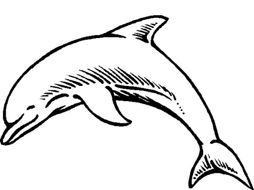 Simple outline smiling dolphin tattoo design