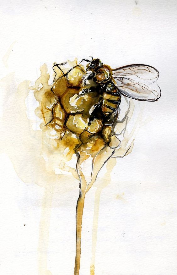 Small bee crawling in watercolor honeycomb ball tattoo design