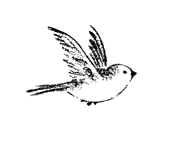 Small black-ink flying sparrow tattoo design