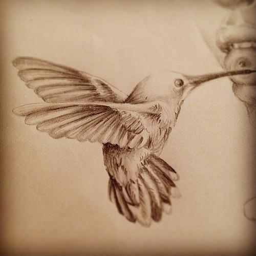 Small grey hummingbird tattoo design