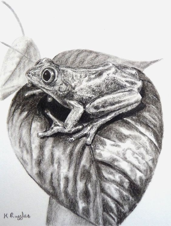 Small surprised black-and-white reptile sitting on huge leaf tattoo design