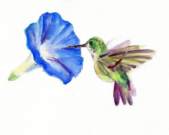 Small watercolor hummingbird sniffing a blue hibiscus flower tattoo design