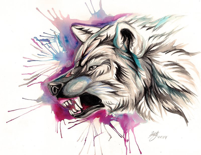 Snarling wolf head design on pink splash background by Lucky978