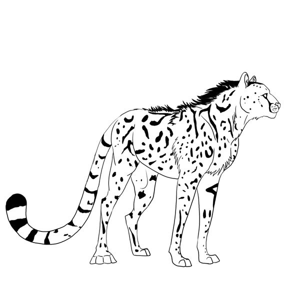 Splendid cartoon outline cheetah king tattoo design by Dark Moon17