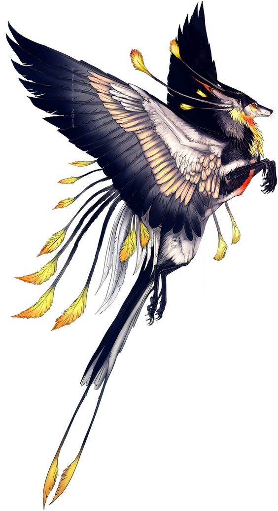 Splendid multicolor griffin flying to the dream tattoo design
