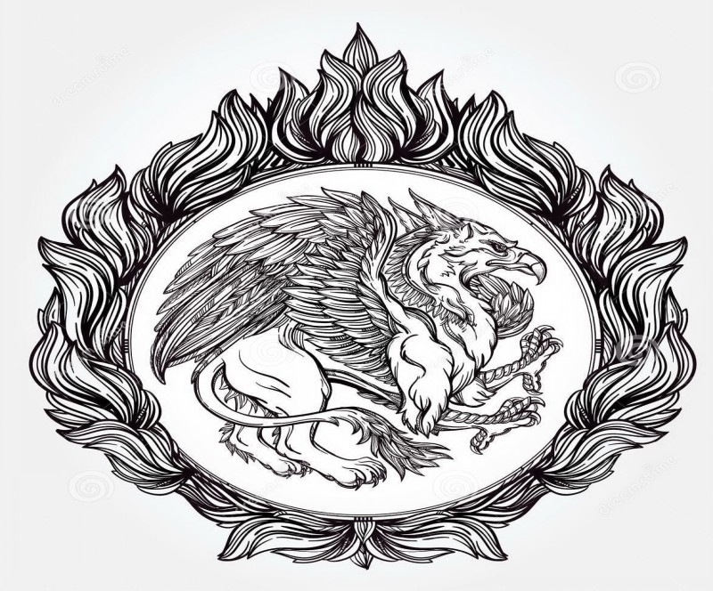 Strick grey griffin in a huge decorated frame tattoo design