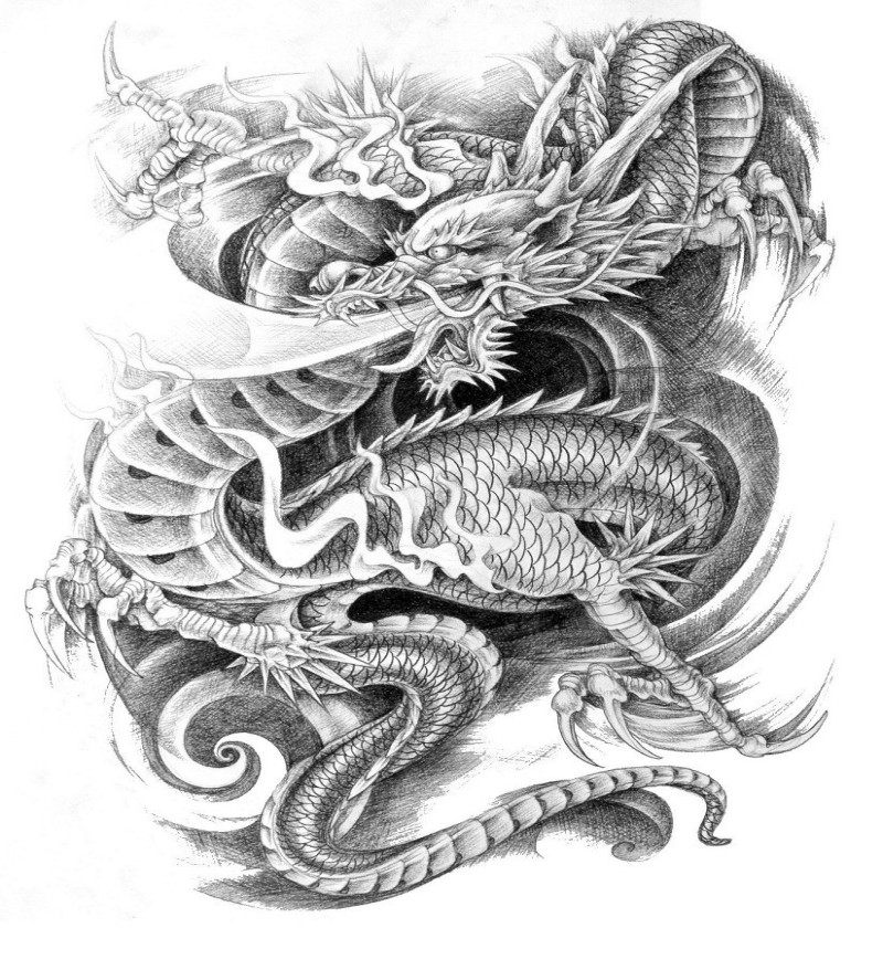strong pencilwork dragon in japanese style tattoo design. Black Bedroom Furniture Sets. Home Design Ideas