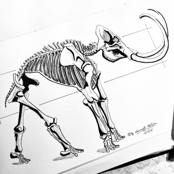 Strong uncolored mammoth skeleton in full size tattoo design