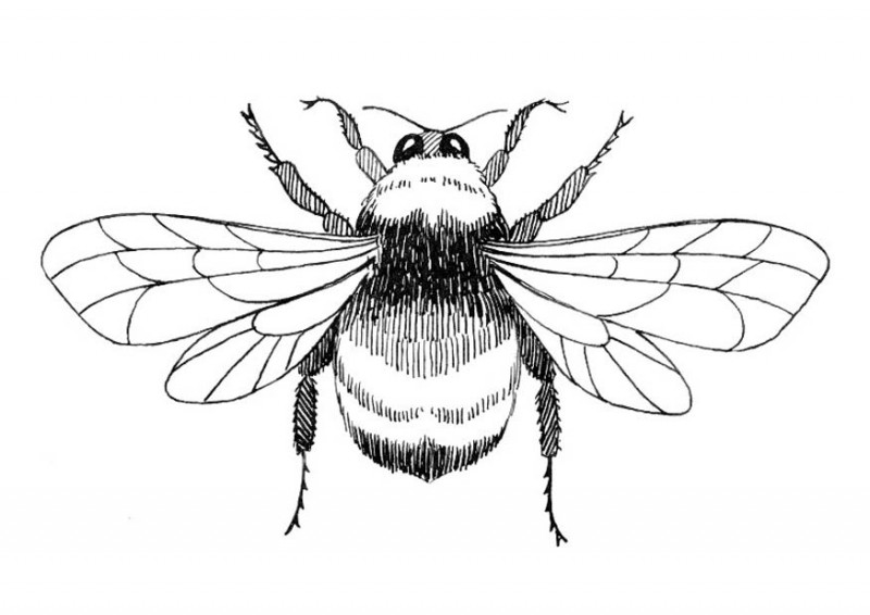 Super black-and-white bee tattoo design