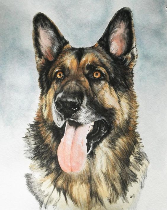 Surprised colorful german shepherd with open mouth tattoo design