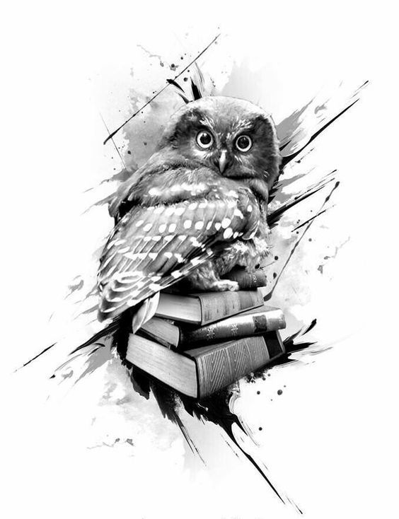 Surprised grey owl sitting on book pile tattoo design