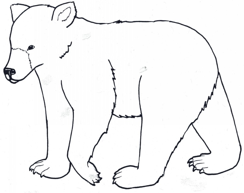 Sweet artoon outline grizzly tattoo design