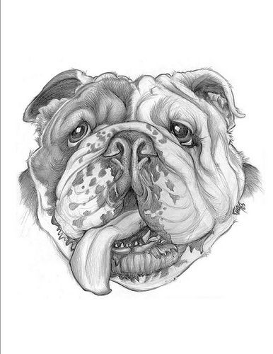 Sweet grey-ink bulldog head with hanging tongue tattoo design