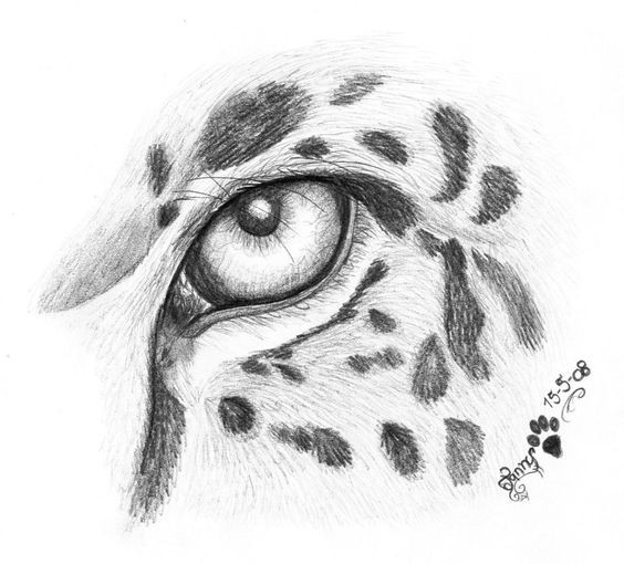 Sweet grey-ink jaguar eye fragment tattoo design