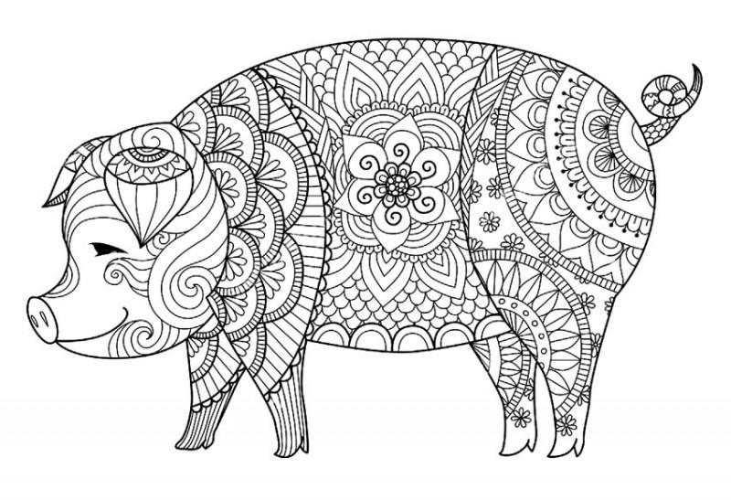 Sweet outline ornate pig tattoo design