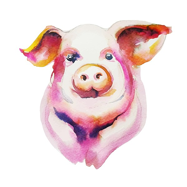 Sweet rosy watercolor pig portrait tattoo design for girls