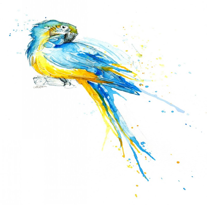 Sweet yellow-and-blue watercolor parrot tattoo design