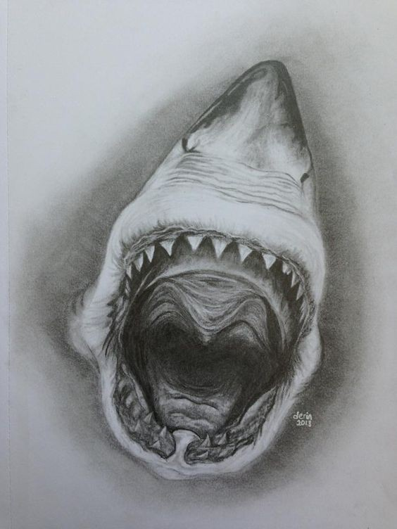 Terrible Black And White Shark Jaws Tattoo Design Tattooimagesbiz