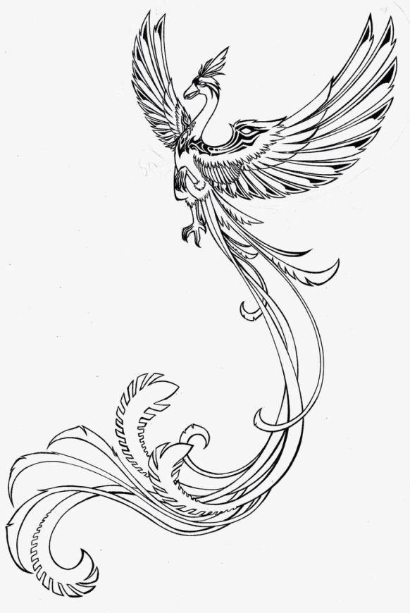 Fenix Voadora Em Preto E Branco Fina Com Desenho De Tatuagem De