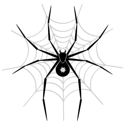 Thin black spider with star print on net tattoo design