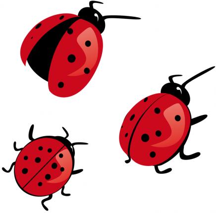 Three cute colorful ladybug tattoo designs
