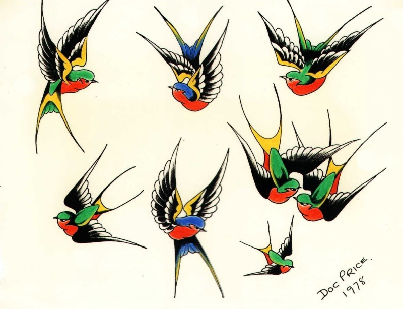 Traditional colored sparrow tattoo design collection