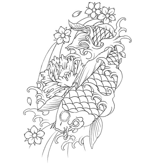 Traditional japanese outline koi fish and cherry flowers tattoo design