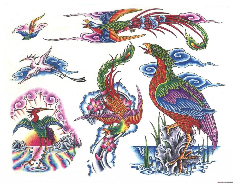 Traditional multicolor phoenix in different poses tattoo design